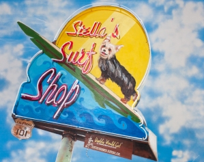 Private Collection \\ STELLA'S SURF SHOP \\ James C. Gray